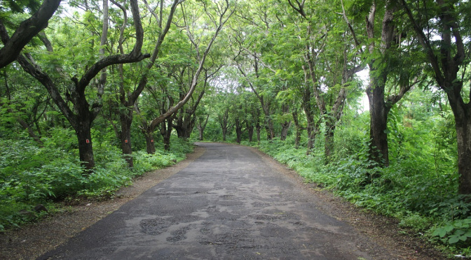5 Most Haunted Places In Mumbai You Don't Want To Visit After The Sun Sets 15