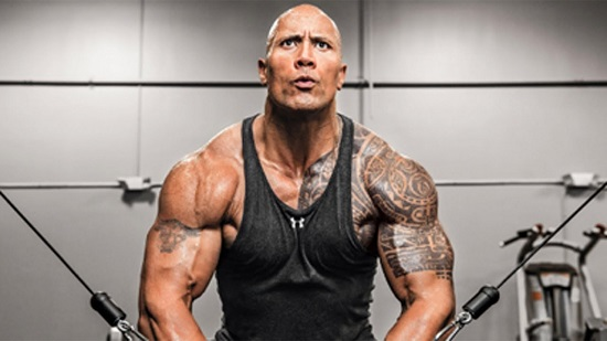 The Rock Contact Address, Phone Number, Whatsapp Number, Email ID, Website 27