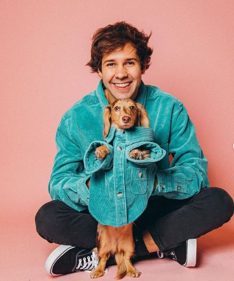 David Dobrik Contact Address, Phone Number, Whatsapp Number, Email ID, Website 7