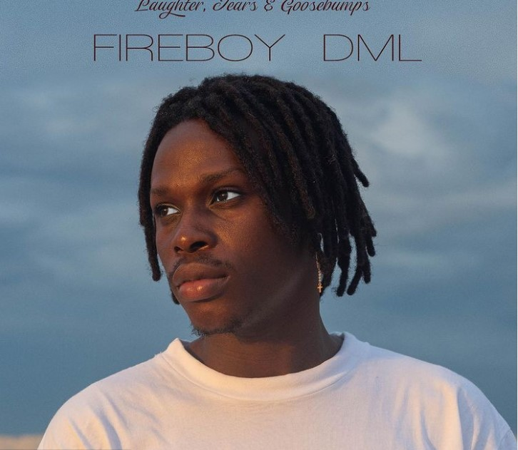 Fireboy DML Contact Address, Phone Number, Whatsapp Number, Email ID, Website 8