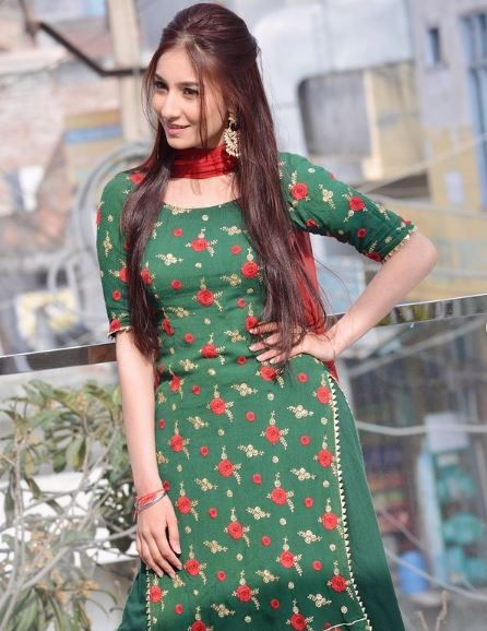 Tannu Kaur Gill Contact Address, Phone Number, Whatsapp Number, Email ID, Website 5