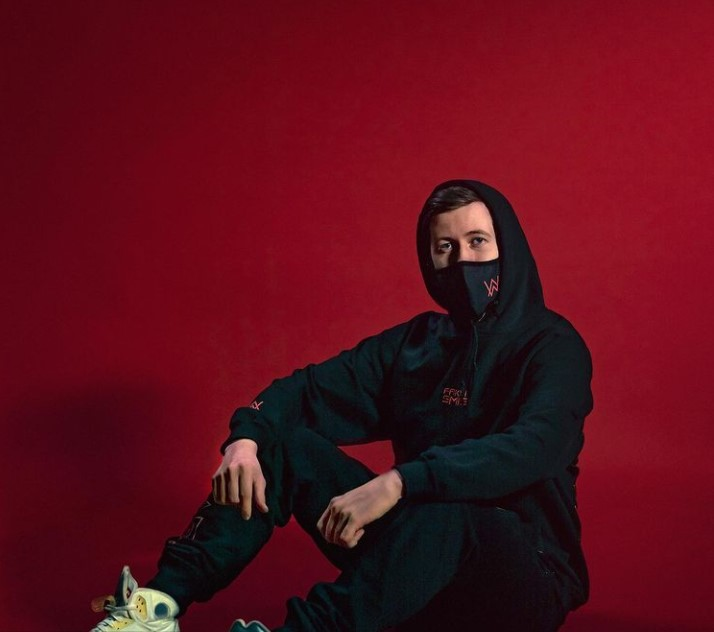 Alan walker Contact Address, Phone Number, Whatsapp Number, Email ID, Website 4