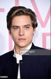 Dylan Sprouse Contact Address, Phone Number, Whatsapp Number, Email ID, Website 21