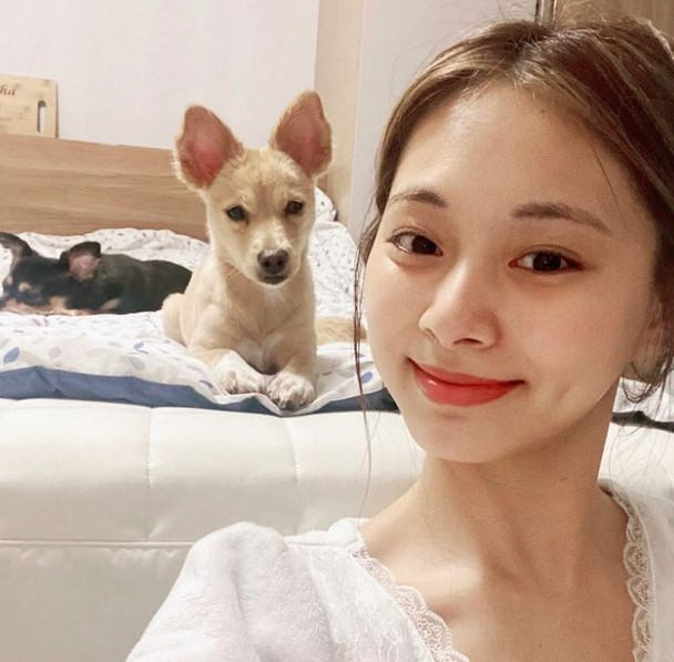 Twice Tzuyu Contact Address, Phone Number, Whatsapp Number, Email ID, Website 12