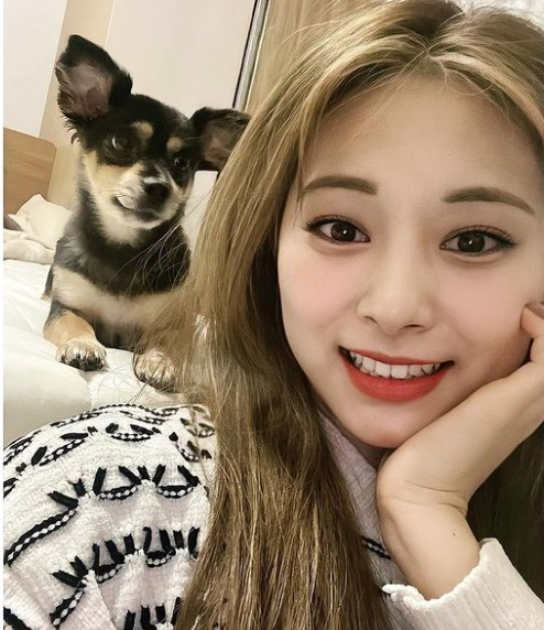 Twice Tzuyu Contact Address, Phone Number, Whatsapp Number, Email ID, Website 10