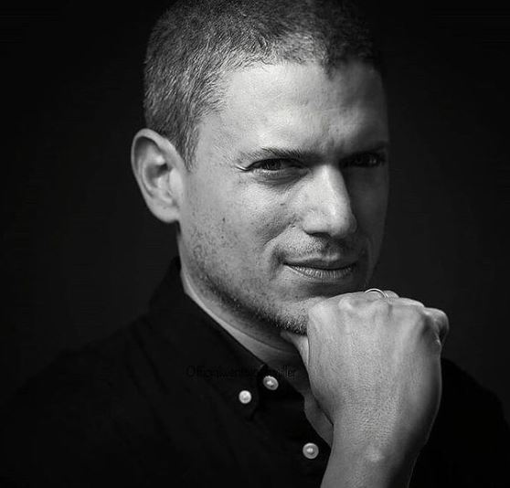 Wentworth Miller Contact Address, Phone Number, Whatsapp Number, Email ID, Website 16