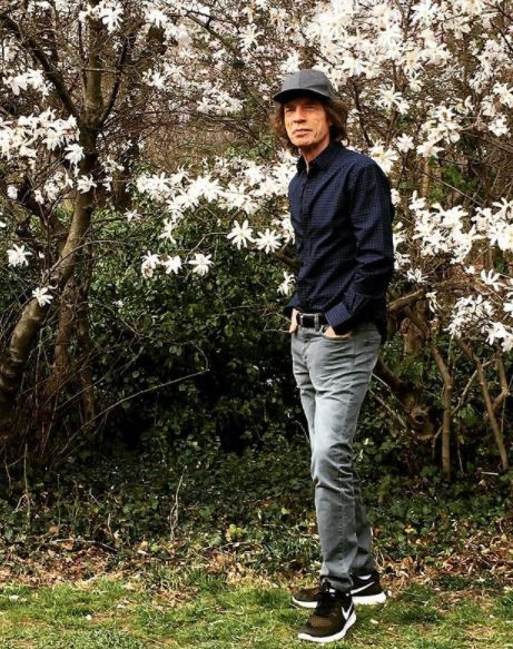 Mick Jagger Contact Address, Phone Number, Whatsapp Number, Email ID, Website 17
