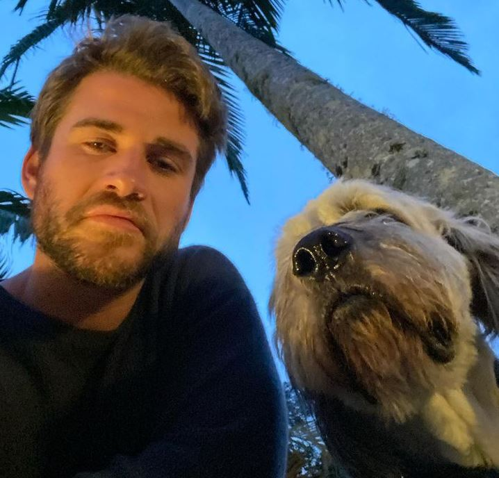 Liam Hemsworth Contact Address, Phone Number, Whatsapp Number, Email ID, Website 14