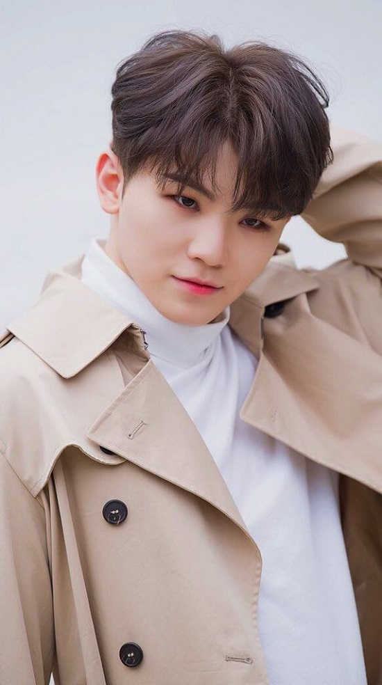 Woozi Contact Address, Phone Number, Whatsapp Number, Email ID, Website 2