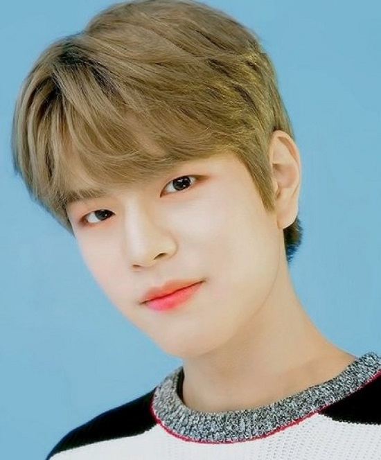 Seungmin Contact Address, Phone Number, Whatsapp Number, Email ID, Website 1