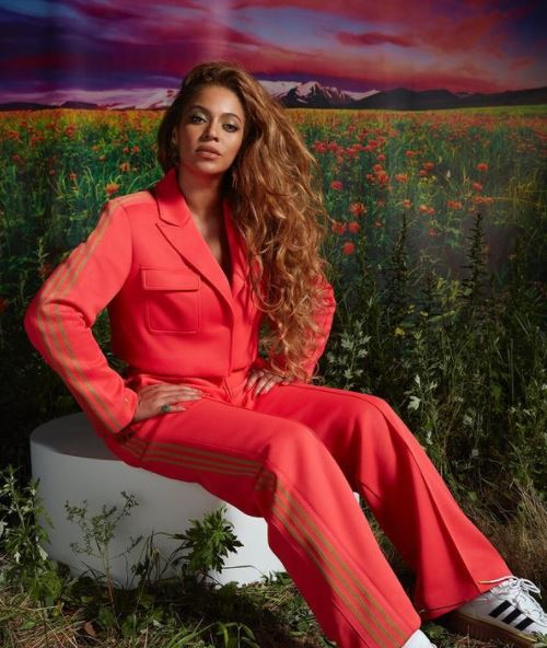 Beyoncé Contact Address, Phone Number, Whatsapp Number, Email ID, Website 16
