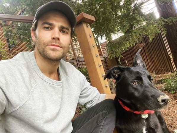 Paul Wesley Contact Address, Phone Number, Whatsapp Number, Email ID, Website 14