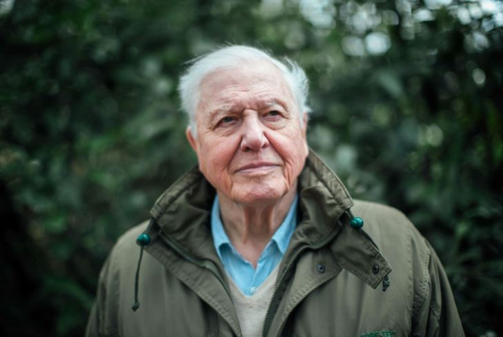 How to Meet David Attenborough Personally and Face to Face